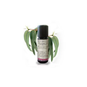 Aceite esencial Eucalipto - Herboldiet