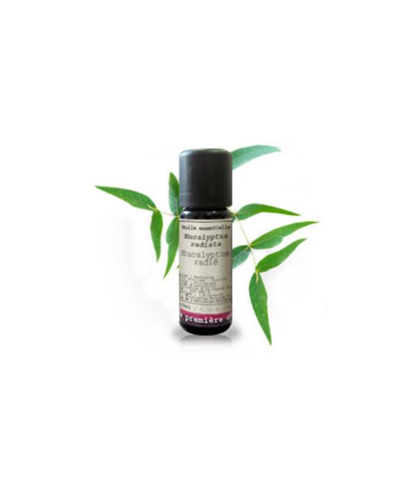 Eucalipto Radiata - Herboldiet