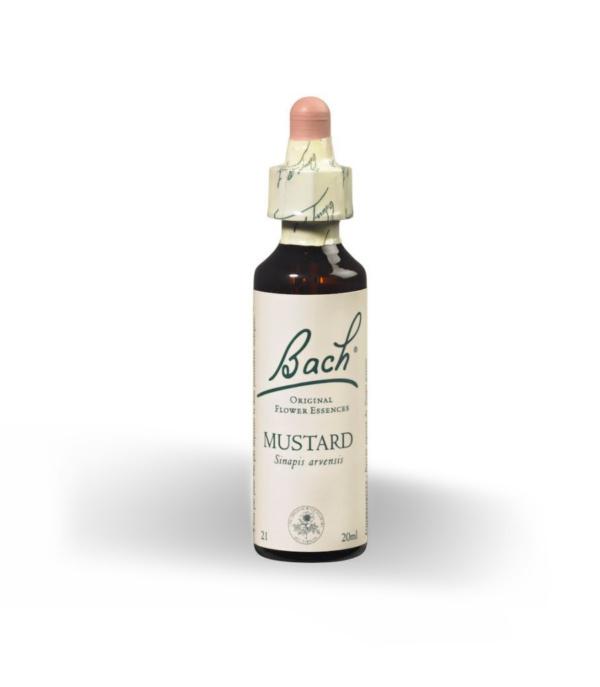 Mustard 21 - Herboldiet